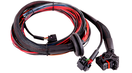 MaxxECU SPORT cable harness